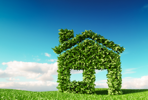 Buying An Eco Friendly Home
